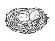 Ninho com o esboço dos ovos que grava o vetor ilustração stock