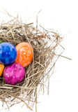 Ninho com os ovos da páscoa no branco Imagem de Stock