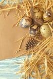 Ninho com os ovos da páscoa no fundo de madeira azul, vista superior com espaço da cópia imagens de stock royalty free