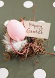 Ninho com ovo de Easter Imagens de Stock