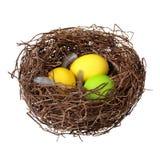 Ninho com ovos da páscoa Fotografia de Stock