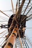 Ninho de corvos Fotografia de Stock Royalty Free