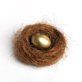 Ninho de Easter Imagem de Stock Royalty Free