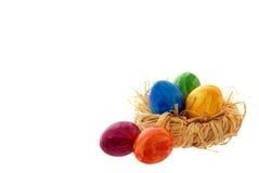 Ninho de Easter Fotografia de Stock