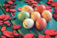 Ninho de ovos de codorniz do chocolate Imagem de Stock