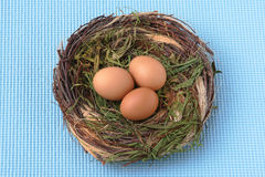 Ninho dentro dos ovos imagens de stock royalty free