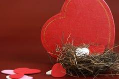 Ninho do amor Imagem de Stock Royalty Free
