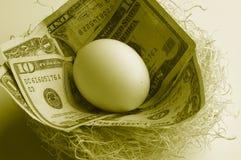 Ninho do dinheiro Imagem de Stock Royalty Free