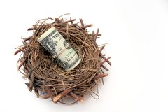 Ninho do dinheiro Foto de Stock