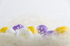 Ninho do ovo da páscoa Imagens de Stock