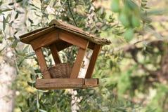 Ninho do pássaro Fotografia de Stock