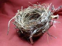 Ninho do pássaro Foto de Stock