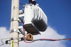 Ninho do pássaro feito em um polo da eletricidade Imagem de Stock