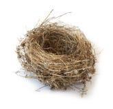 Ninho do pássaro isolado no branco Fotos de Stock Royalty Free