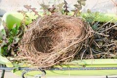 Ninho do pássaro vazio Imagem de Stock