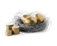 Ninho dourado II do ovo Foto de Stock Royalty Free
