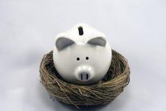 Ninho Piggy Imagem de Stock Royalty Free