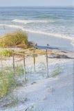 Ninho protegido da tartaruga de mar Fotografia de Stock Royalty Free