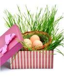 Ninho verde com os ovos na caixa de presente Foto de Stock