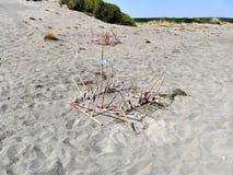 Ninhos da tartaruga de mar na praia em Grécia Fotos de Stock Royalty Free
