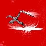战斗机ninja 免版税库存图片