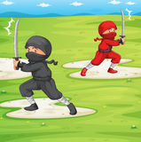 Ninja. Illustration of a ninja in a field Royalty Free Stock Images