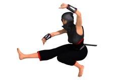 ninja royalty-vrije illustratie