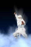 Ninja bianco Immagini Stock Libere da Diritti