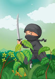 Ninja Royalty Free Stock Photography
