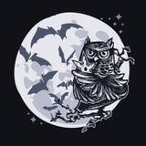 Ninja owl Stock Images