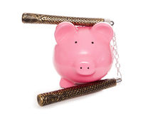 Ninja piggy bank Stock Photos