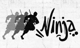 Ninja remis royalty ilustracja
