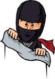 Ninja skinn royaltyfri illustrationer