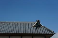 Ninja sul tetto Fotografia Stock