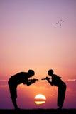 Ninja at sunset Stock Photography