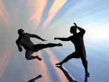 Ninja twee in strijd. Stock Fotografie