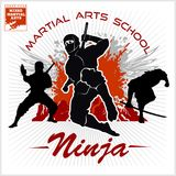 Ninja Warrior Fighter - arte marziale mista Fotografia Stock