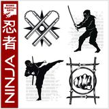 Ninja Warrior Fighter - Mixed Martial Art. Vector illustration on white background Stock Photo