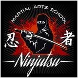 Ninja wojownika wojownik - Mieszana sztuka samoobrony Zdjęcia Royalty Free