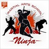 Ninja wojownika wojownik - Mieszana sztuka samoobrony Fotografia Stock