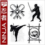 Ninja wojownika wojownik - Mieszana sztuka samoobrony Zdjęcie Stock