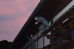 Ninjyastrijder, Japan Stock Fotografie
