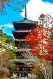 Ninna籍寺庙京都 库存照片