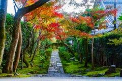 Ninna-ji świątynia Kyoto Fotografia Royalty Free