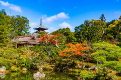 Ninna-ji Temple Kyoto Stock Image