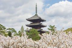 Ninna-ji temple, Kyoto, Japan Royalty Free Stock Photo