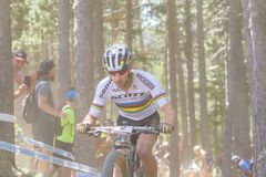 NINO SCHURTER SUI in the MERCEDES-BENZ UCI MTB WORLD CUP 2019 - XCO Vallnord, Andorra on July 2019 stock image