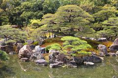 Ninomaru庭院,京都 库存图片