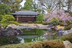 Ninomaru trädgård i den Nijo slotten i Kyoto, Japan Royaltyfria Bilder