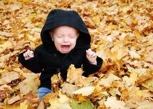 Niño con el griterío de las hojas Foto de archivo libre de regalías